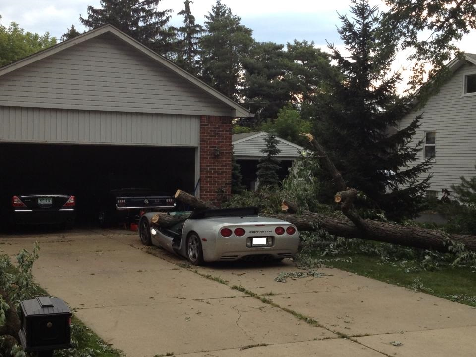 Tree Fallen on Corvette Total Loss